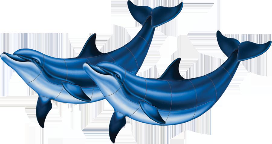 PORC-BD2D  Bottlenose Dolphin (double).png