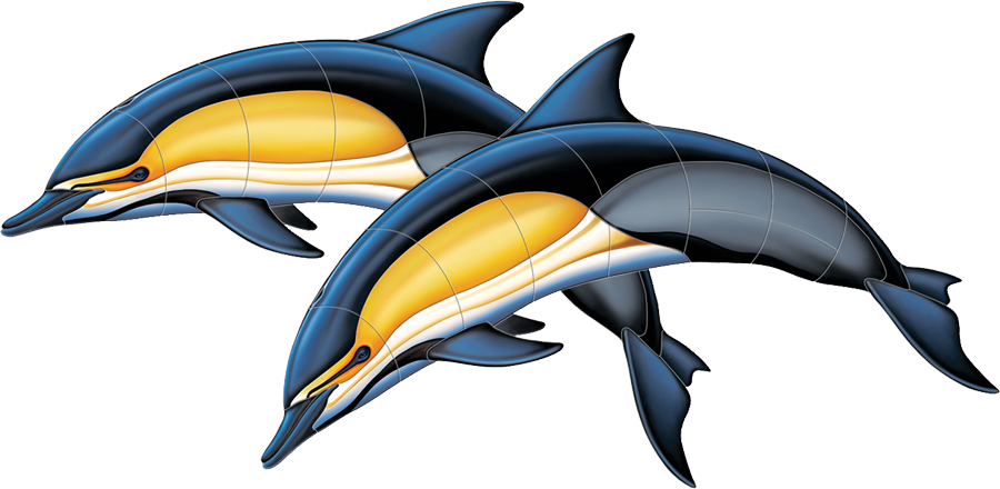 PORC-CD50D  Common Dolphin Double copy.png