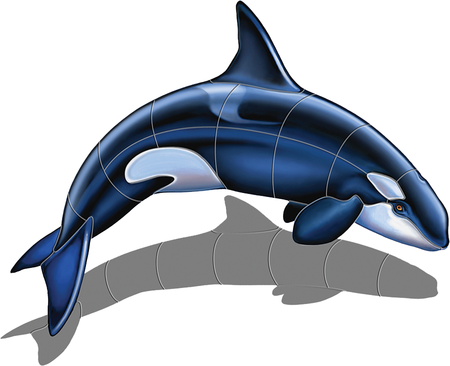 PORC-OR52-SH  Orca-A (with shadow) copy.png