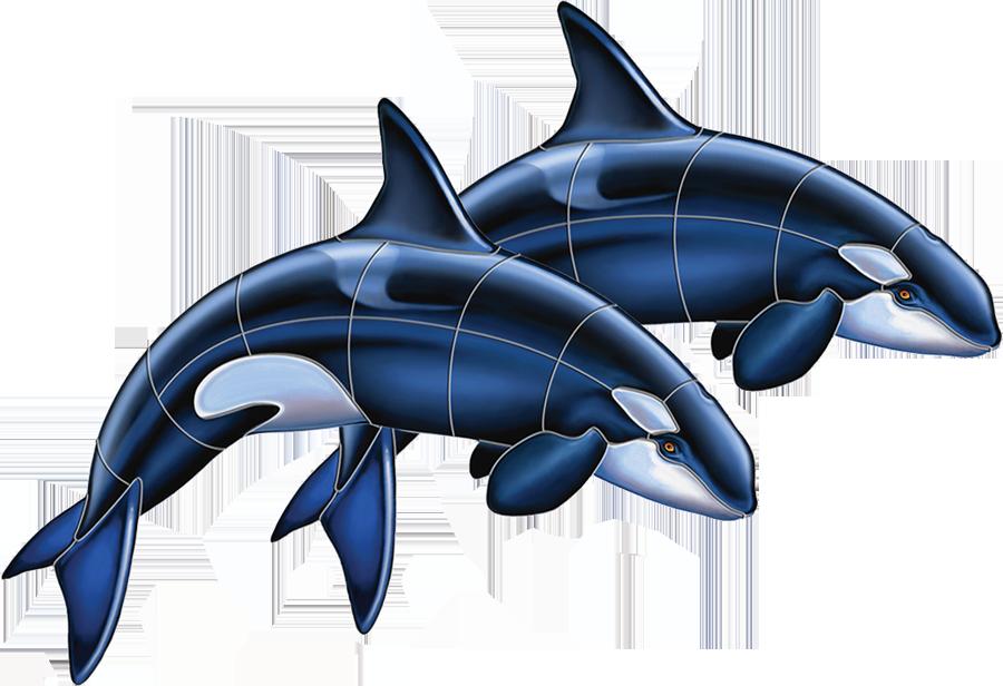 PORC-OR52D  Orca Double copy.png