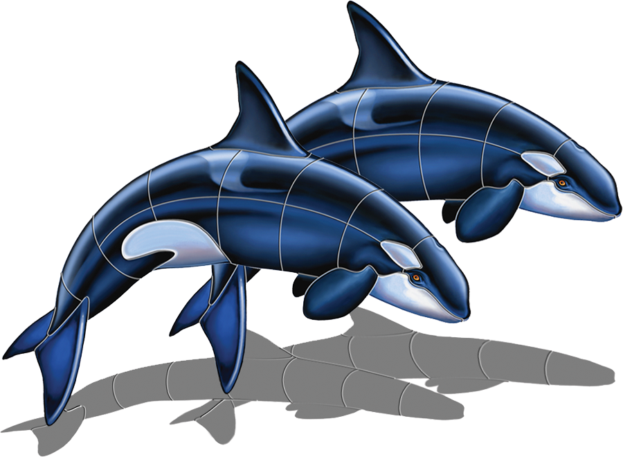 PORC-OR52D-SH  Orca Double (with shadow) copy.png