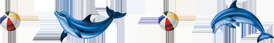 PORC-DG35S  Dolphin Step Markers copy.png