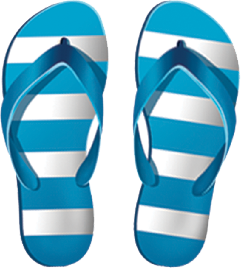 PORC-BS62  Boys Flip Flops copy.png