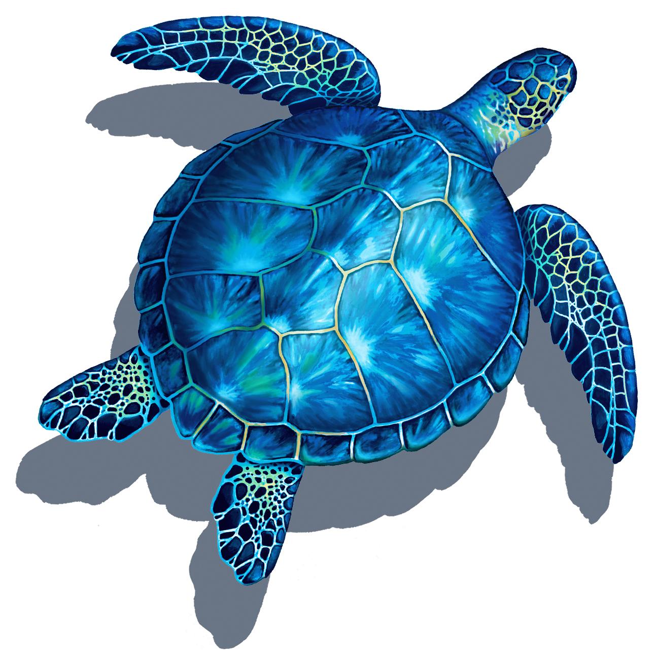 Blue Turtle w/ sh