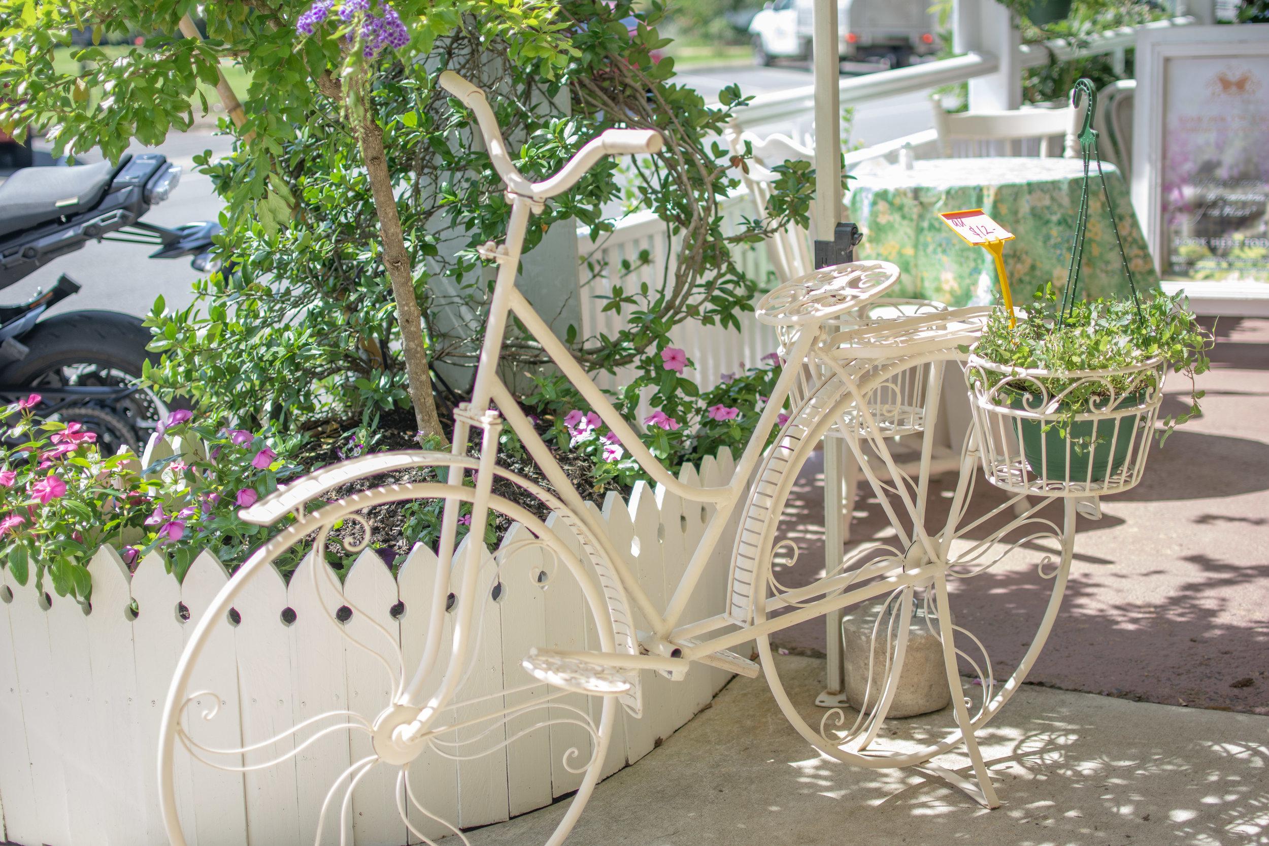 brooke bicycle.jpg