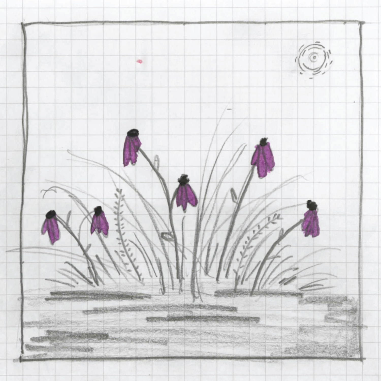 Gardener13.jpg