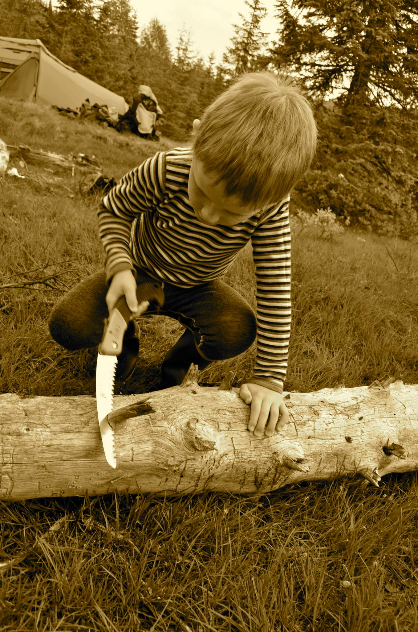 Gutten håndterer sag og kniv i en alder av seks år uten noen problemer.