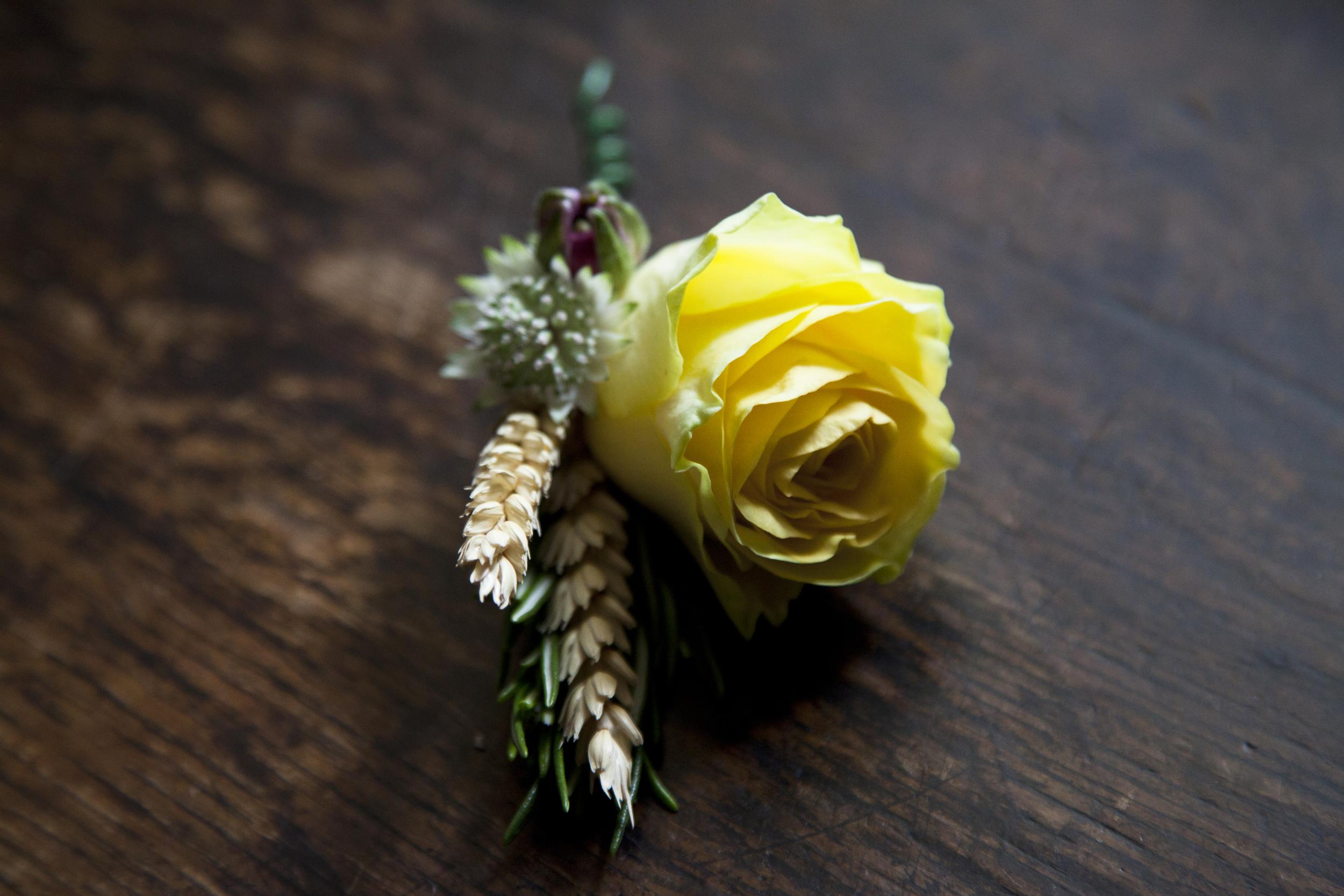 Yellow rose buttonhole P&C.jpg