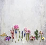 Spring flowers 2.jpg