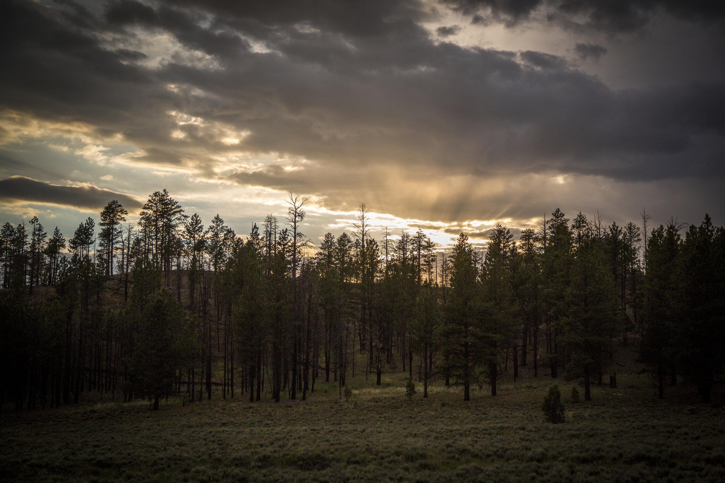 Sunrise - Bryce Canyon