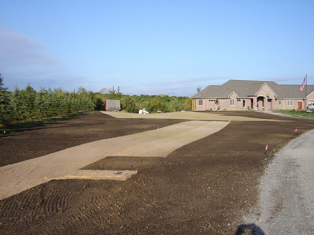 lawn seed sod 7.JPG
