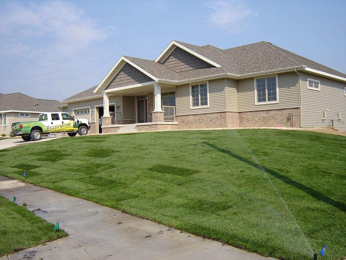 lawn seed sod 12.JPG