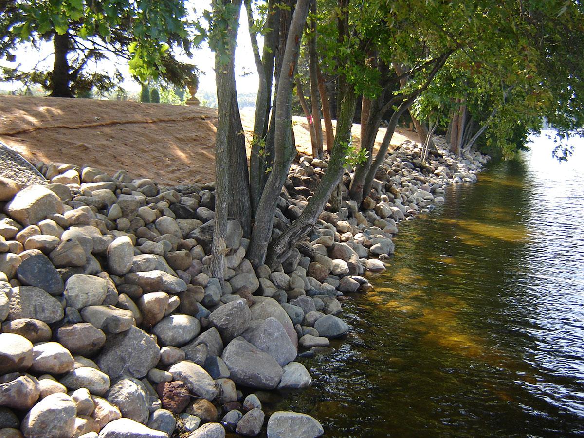 shoreline restoration 12.JPG