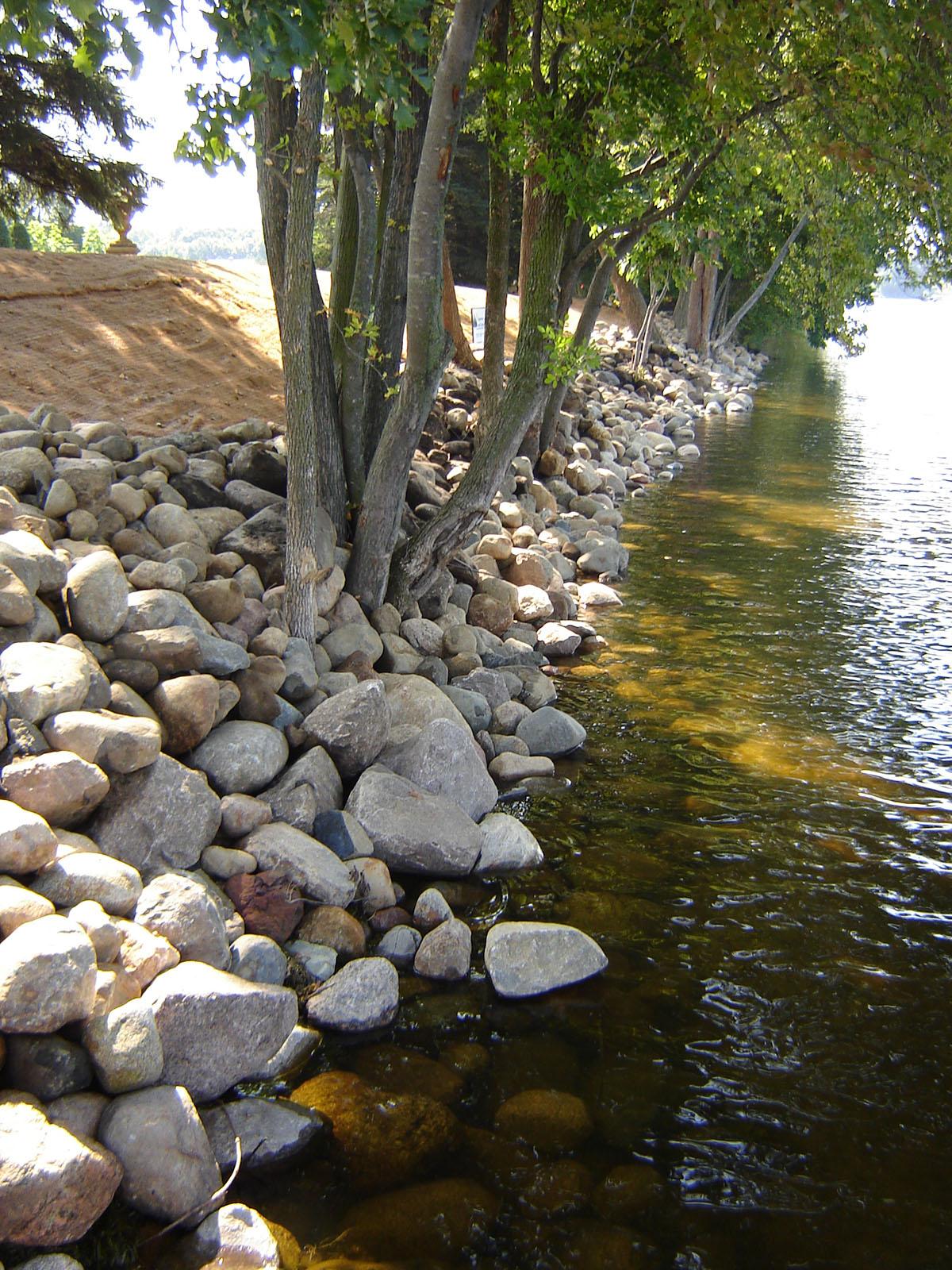 shoreline restoration 13.JPG