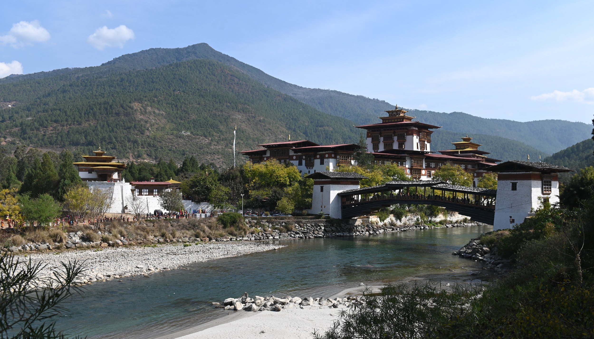 ADSC_1171dzongandbridge - Copy.jpg