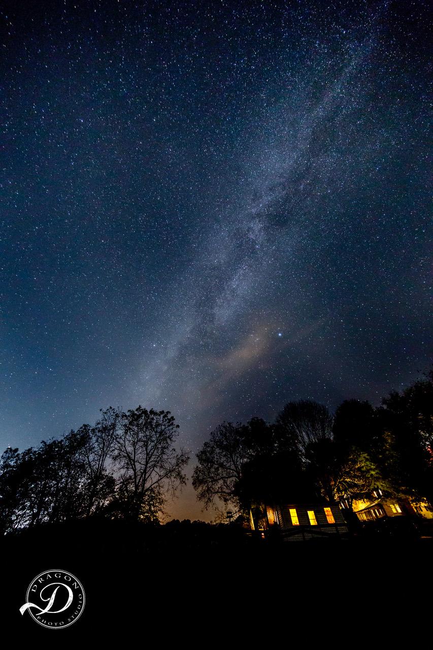 starry night gsp.jpg