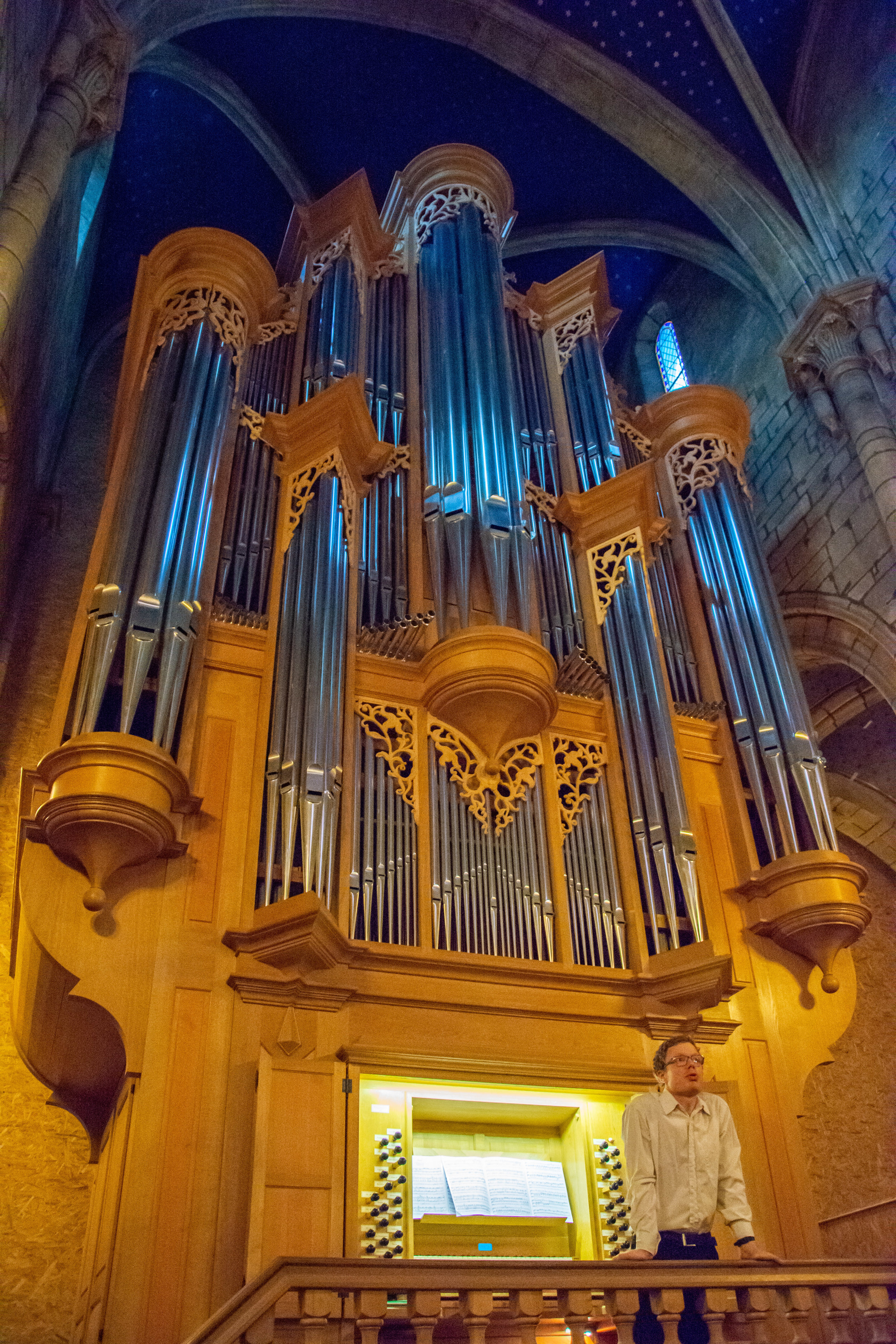 The Sound of the Organ