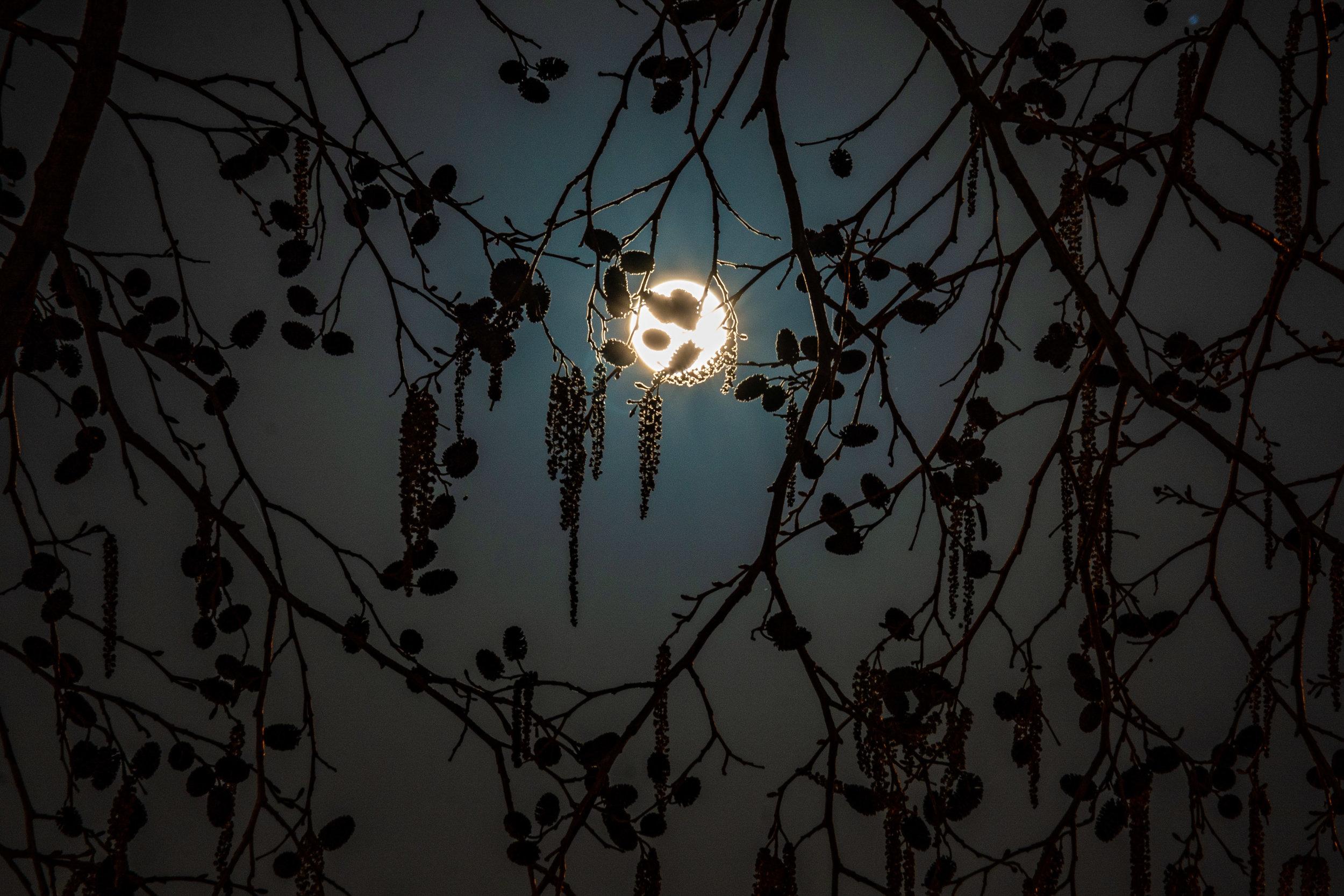 Hello, Moon 2