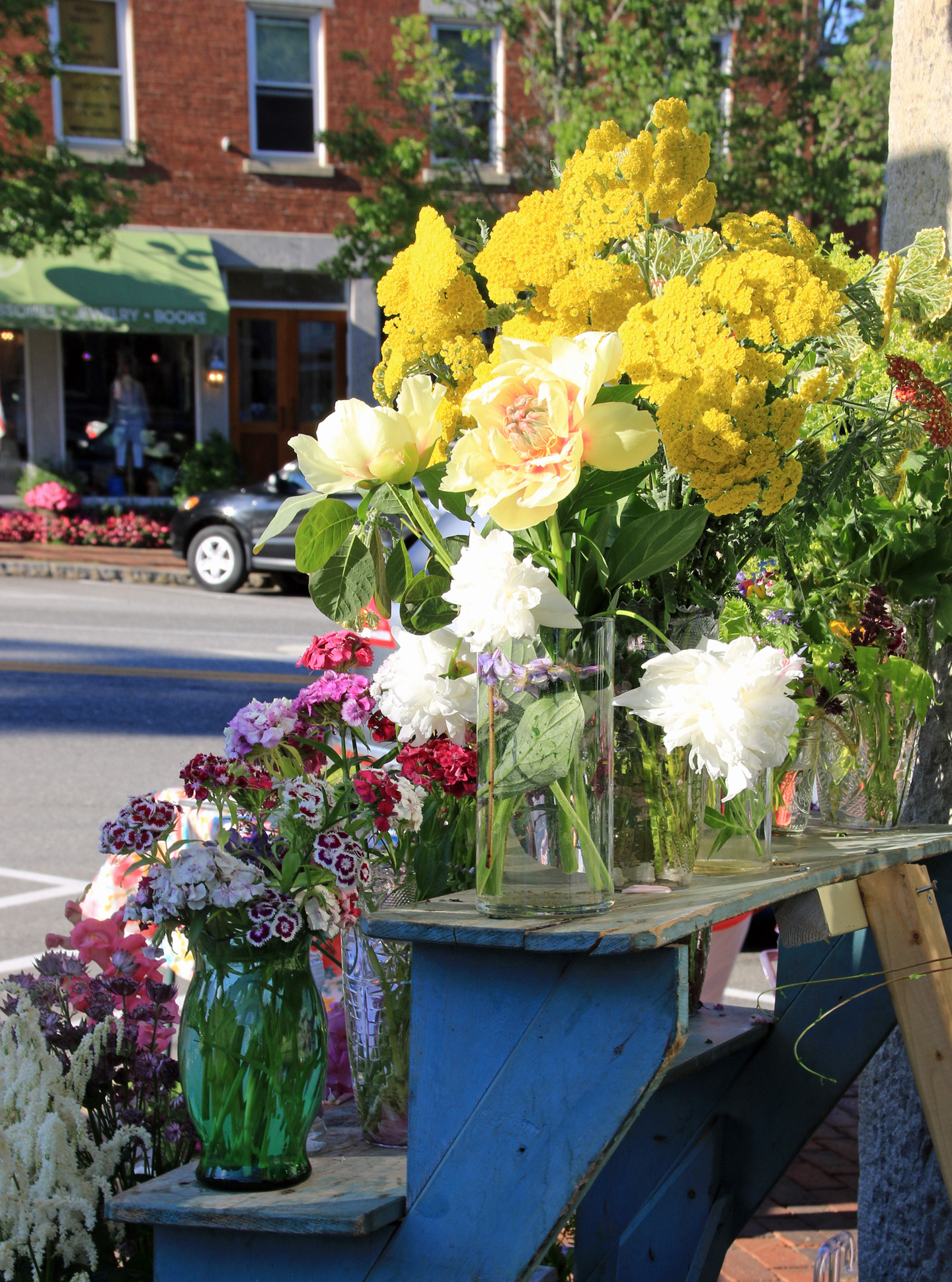 Garden Club of Wiscasset