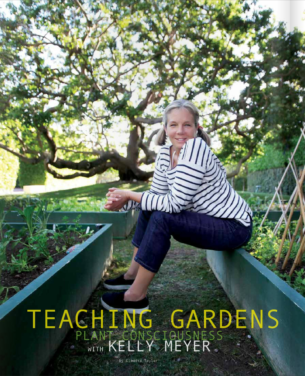 Teaching Gardens p 1.png