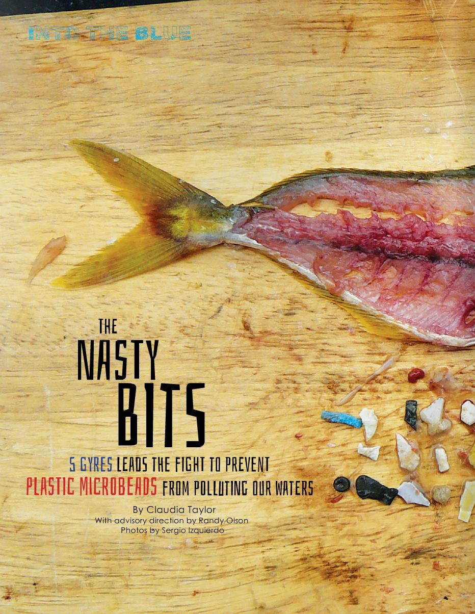 Nasty Bits: 5 Gyres p 1.png