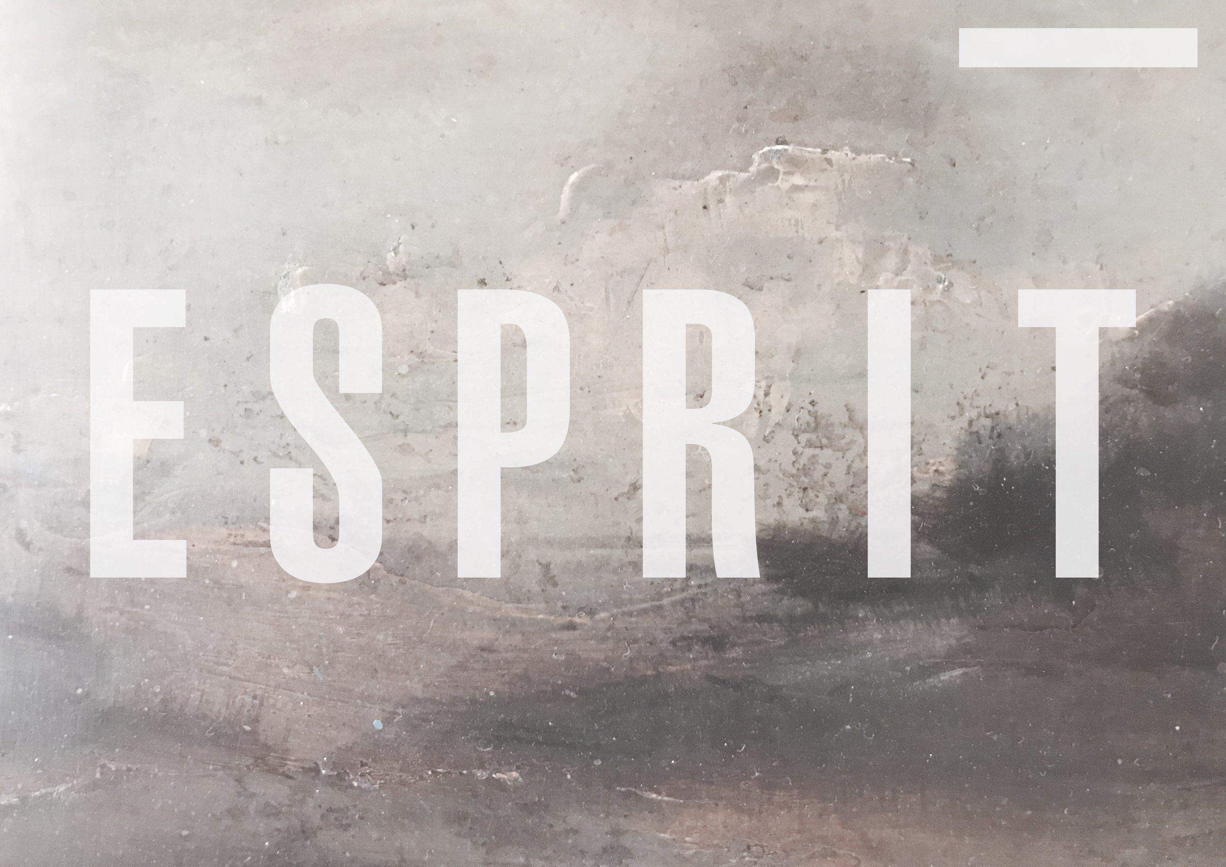 NEW COLLECTION _ ESPRIT ... IN AUGUST !