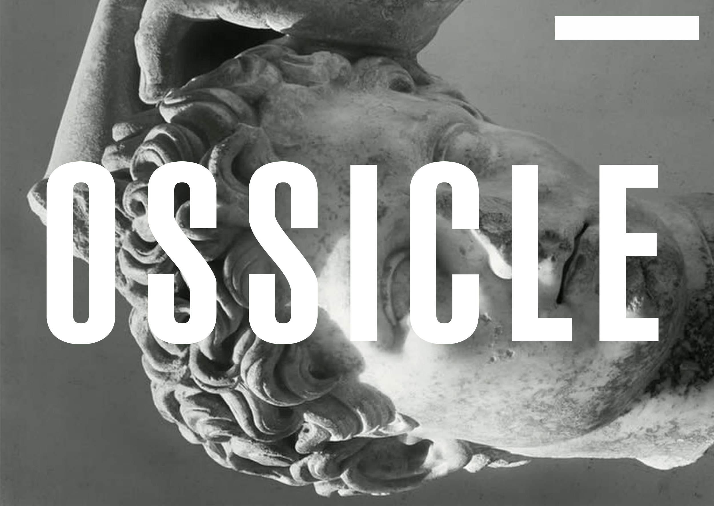 NEW COLLECTION _ OSSICLE COMING SOON ...