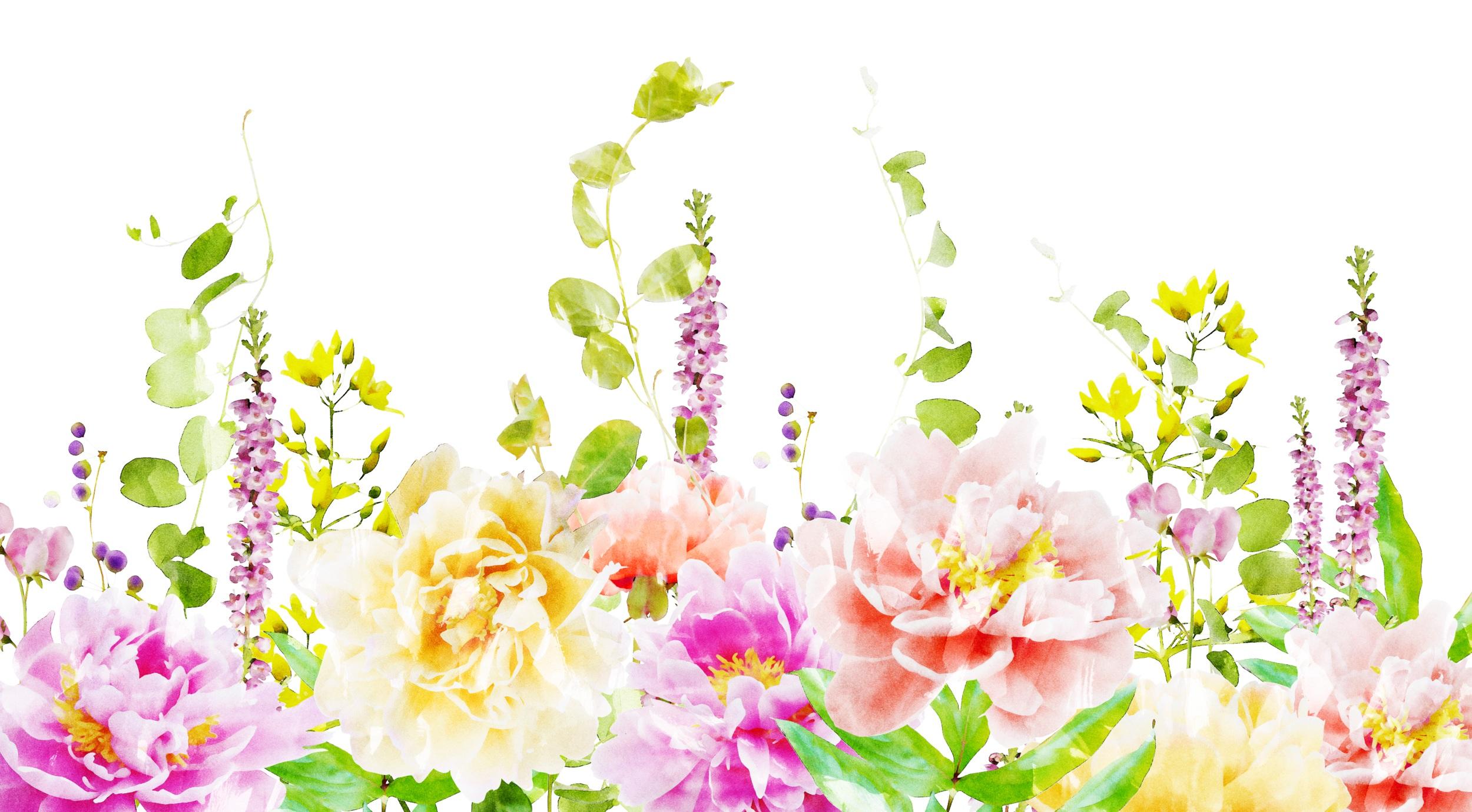 FloralDrop_3.jpg