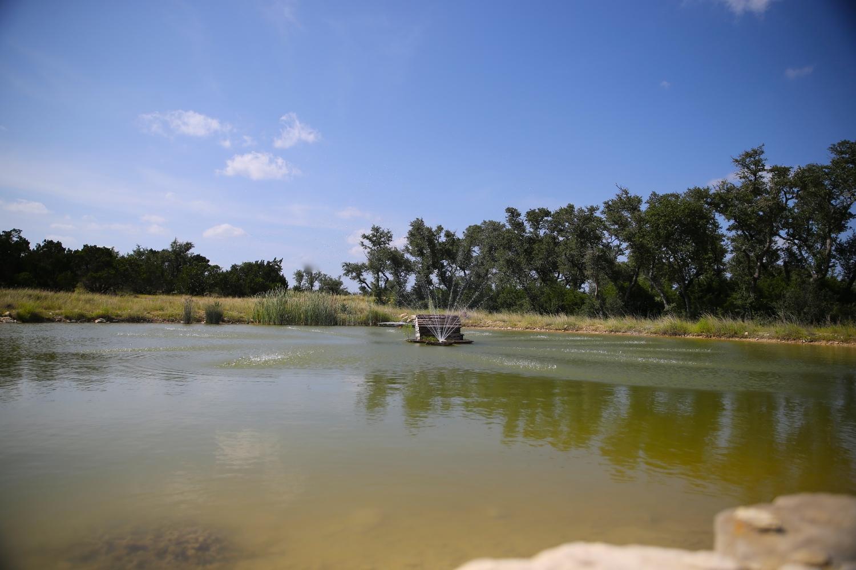 Asante+Pond1.jpg