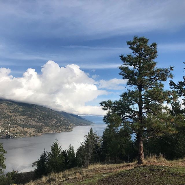This is one gorgeous spot in the world.  Okanagan Valley is so beautiful, I try not to take it for granted. . . . . . . . #okanaganvalley #kelowna #okanagan #okanaganlifestyle #knoxmountain#inspiration#landscape #paradise#nature