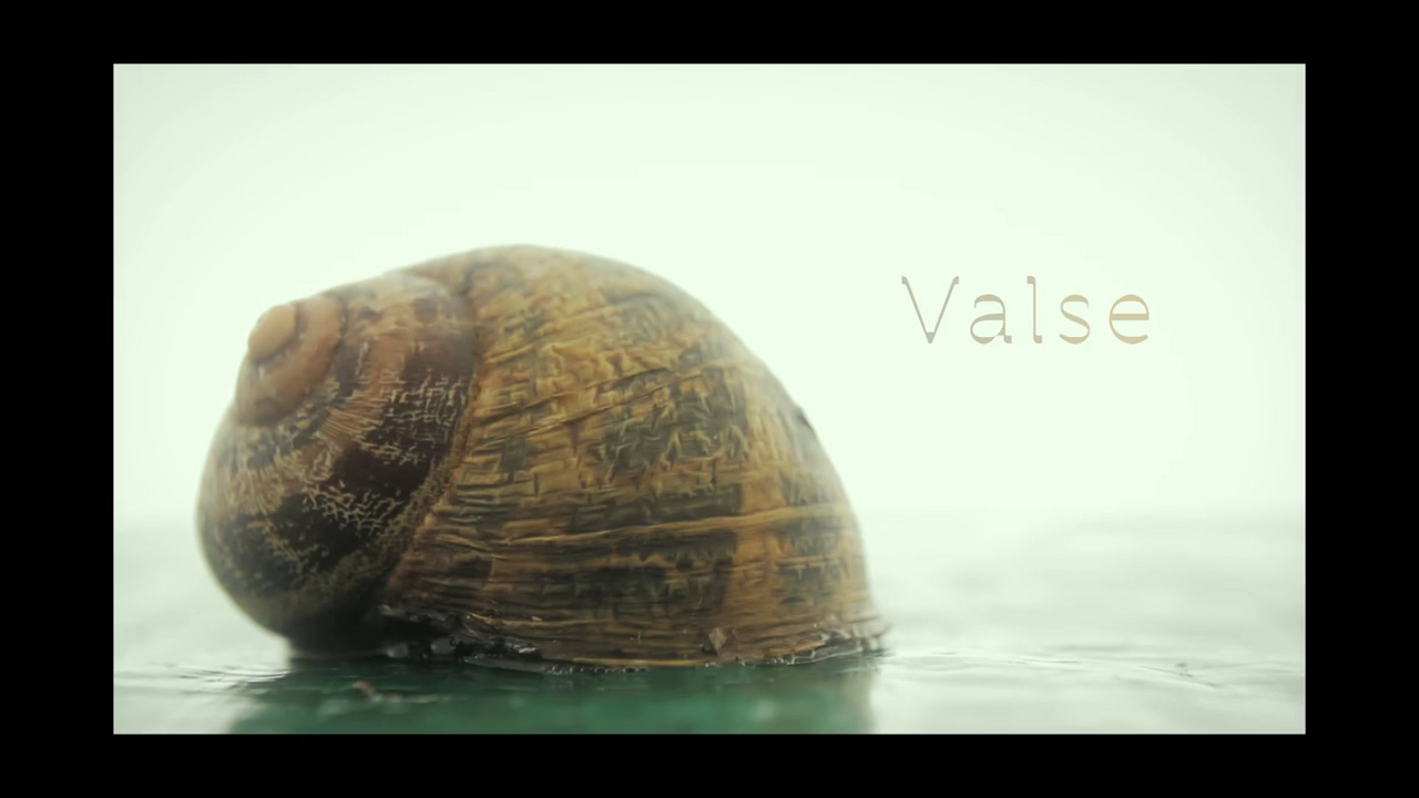 valse_still_03.jpg