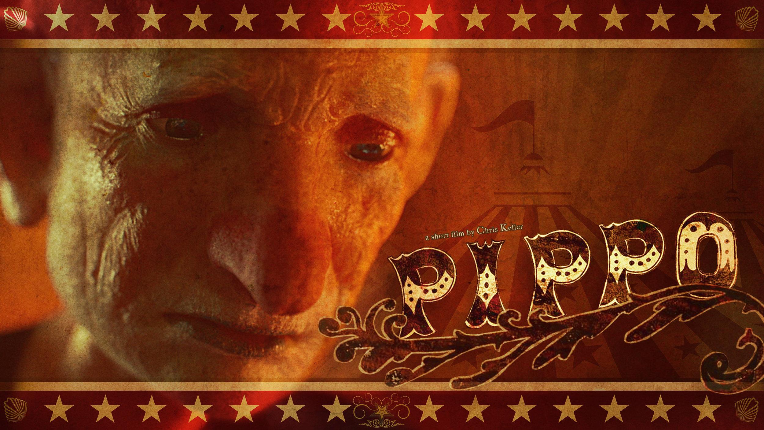 PIPPO (short film)
