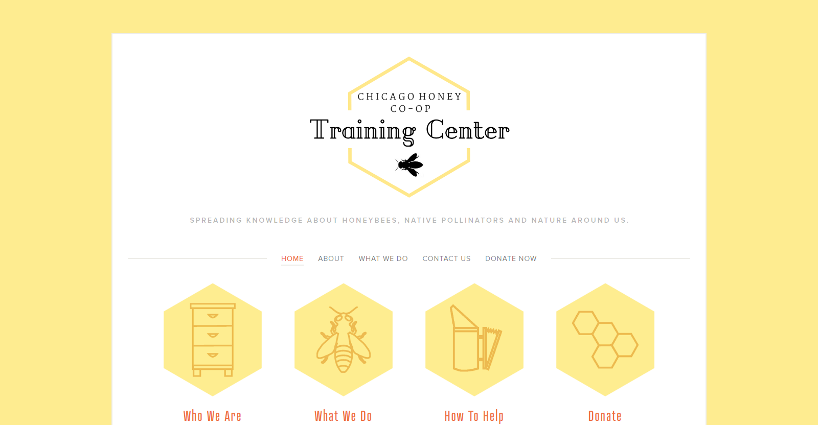 CHICAGO HONEY CO-OP TRAINING CENTER - This small non profit needed a website to introduce it's services to the public. As an offshoot of Chicago Honey Co-op (right) it needed to establish it's own identity and make clear what it has to offer. Services provided - logo design, beekeeping graphics, responsive website design, copywriting and images.