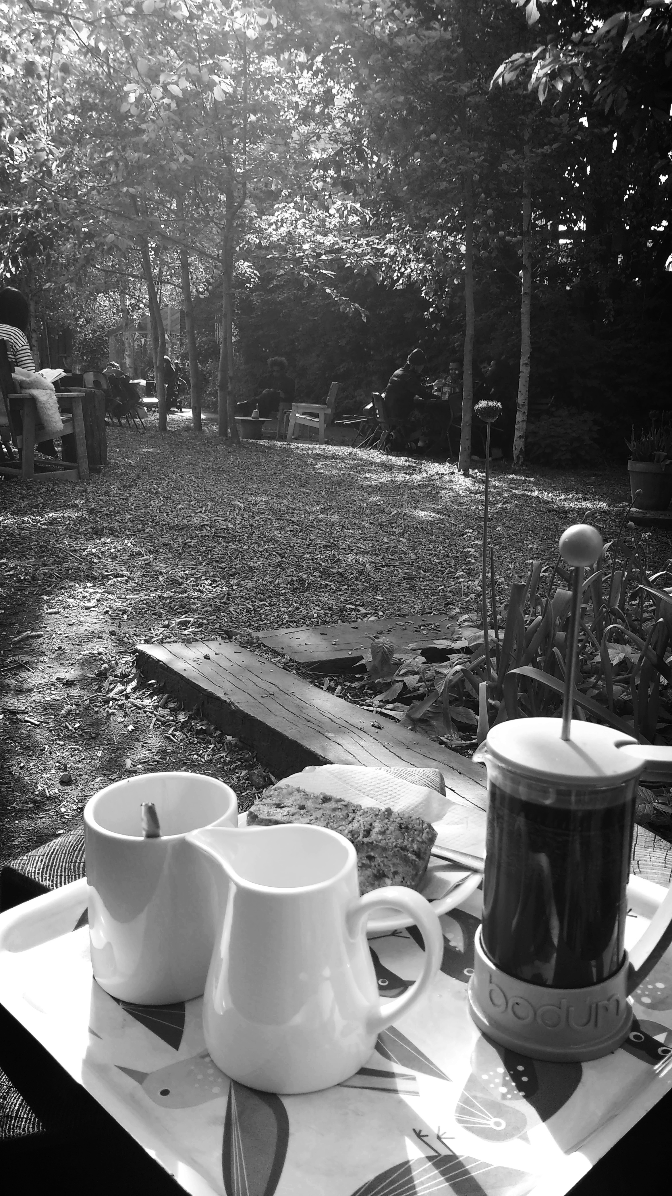 Coffee and carrot cake a Friday afternoon in spring at Dalston Eastern Curve Garden