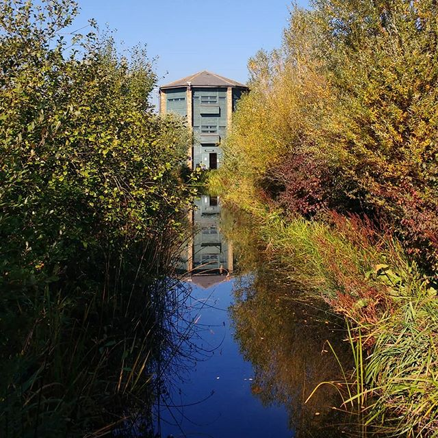 October and a birthday trip to London @wwtlondon