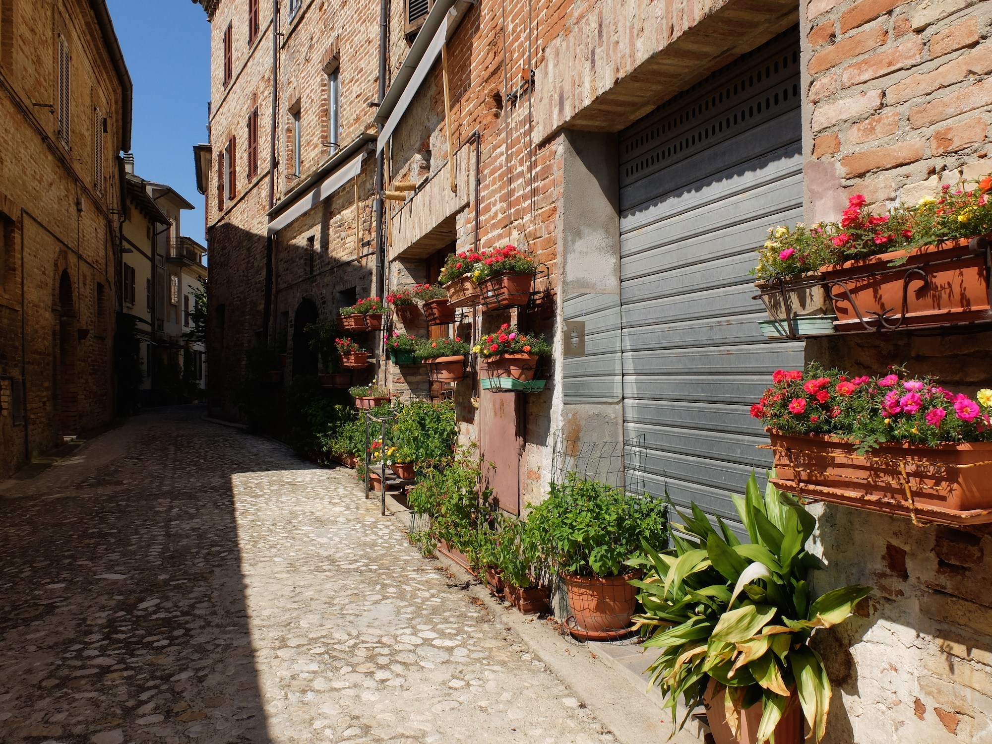 Ripatransone (Le Marche, Italië), stad met het nauwste steegje van Italië? Ontdek het met onze Citywalk.