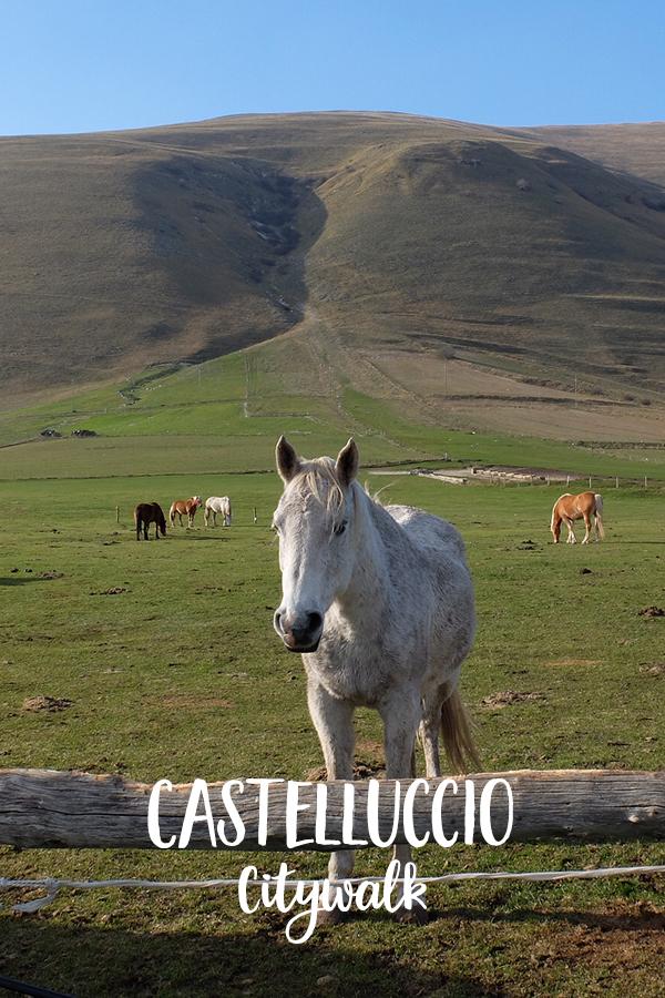 Castelluccio di Norcia, Le Marche, Italië