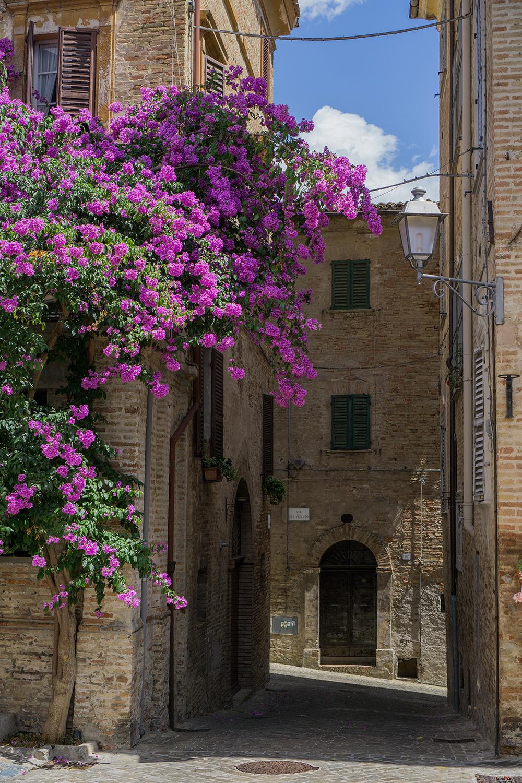 Corinaldo, Le Marche, Italië