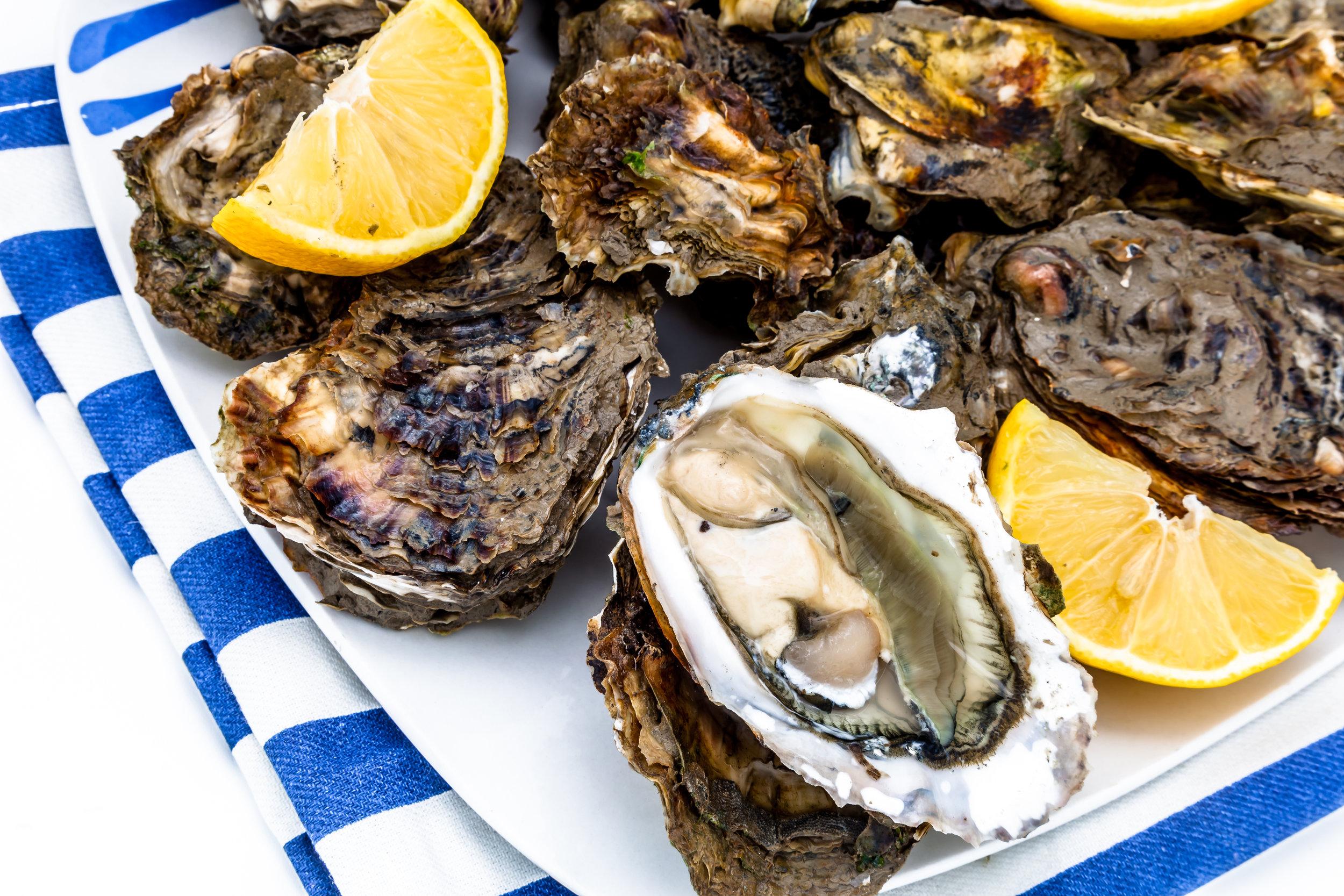 oysters-PN3KQBW.jpg