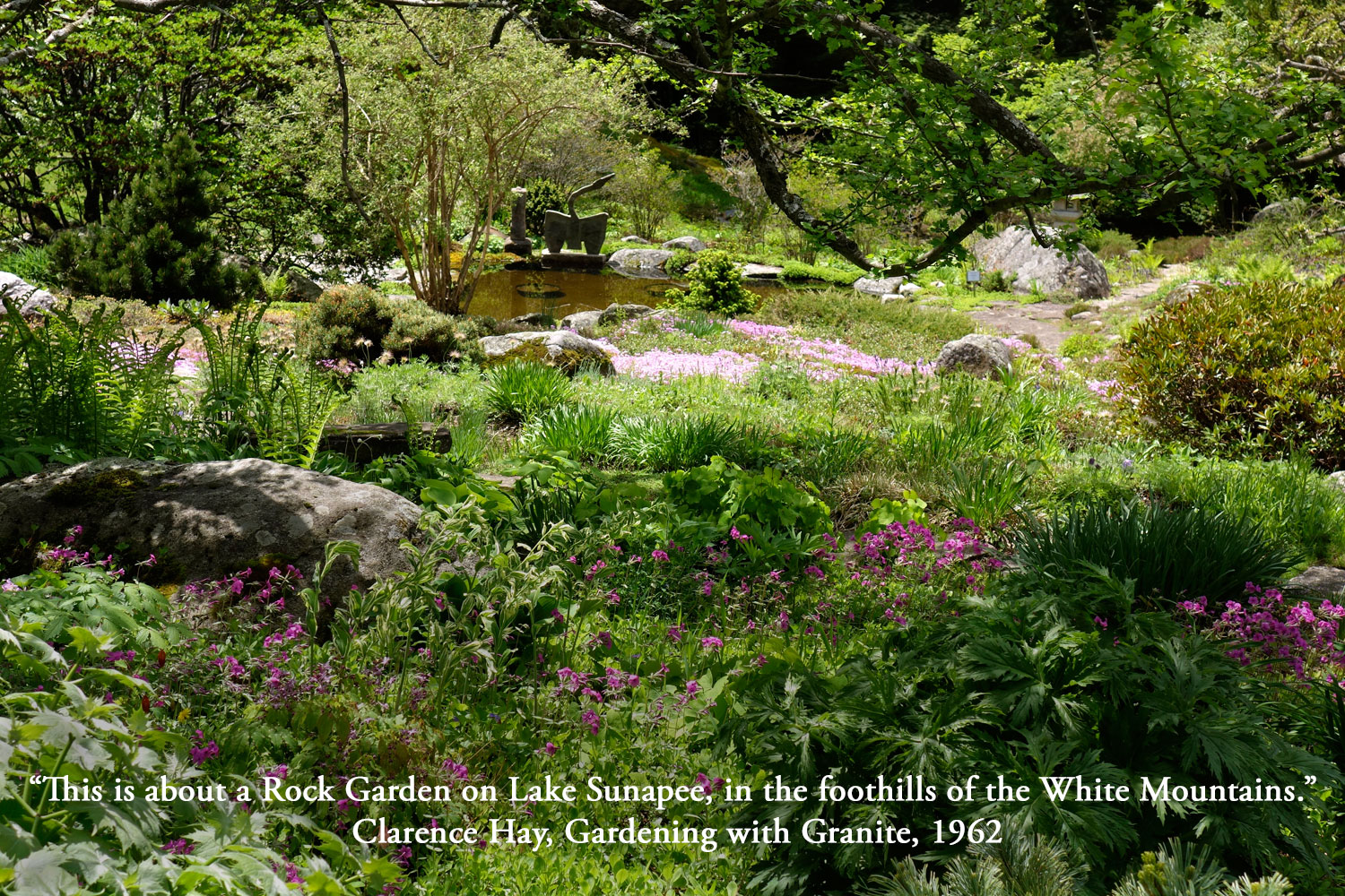 The Fells Estate Rock Garden