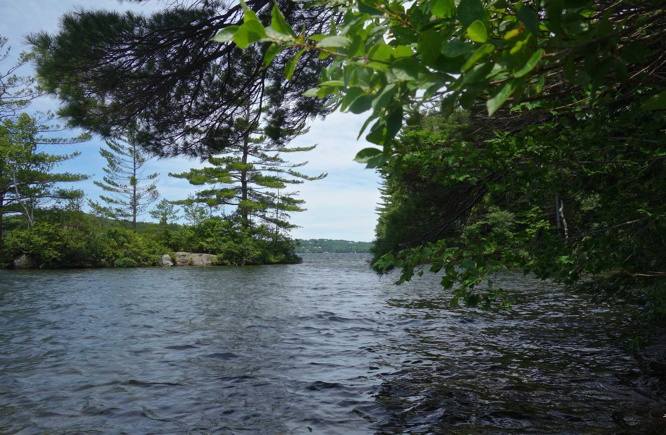 Minute Island Lake Sunapee