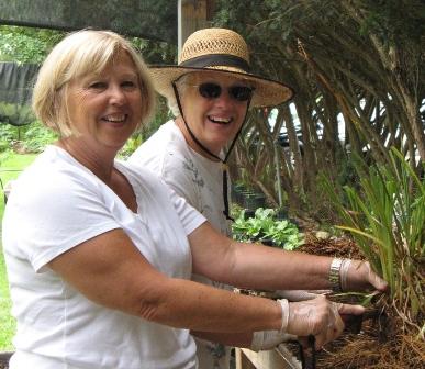 Volunteers Dividing Plants-r.jpg