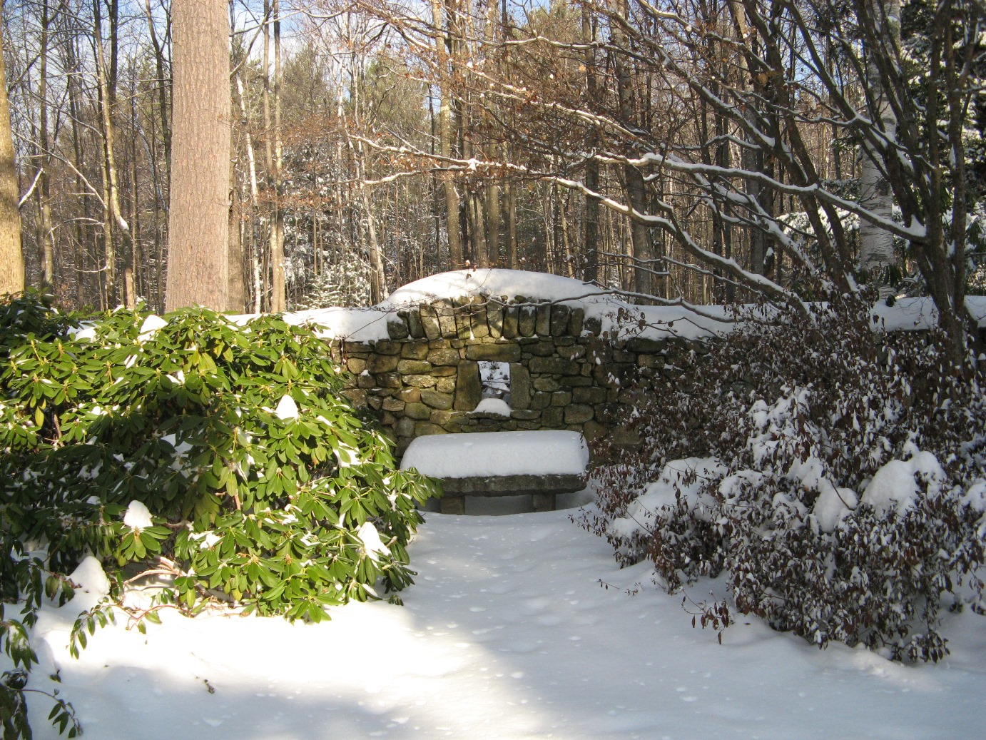 Old Garden Bench in Winter.JPG