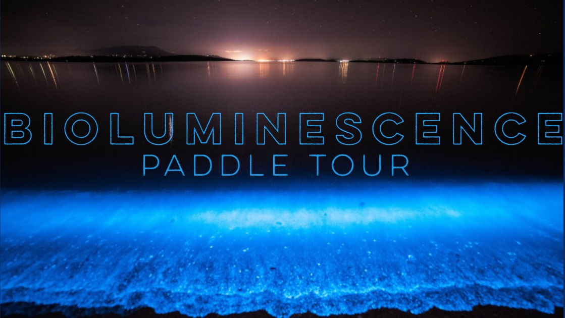 August 31, 2019 9p - Bioluminescence Paddle Tour at the Space Coast