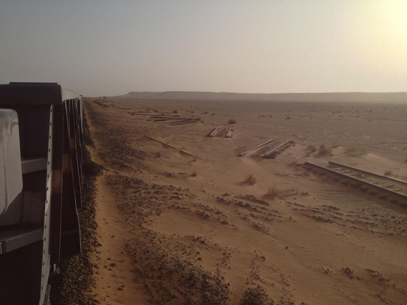 Will_Sahara310.jpg