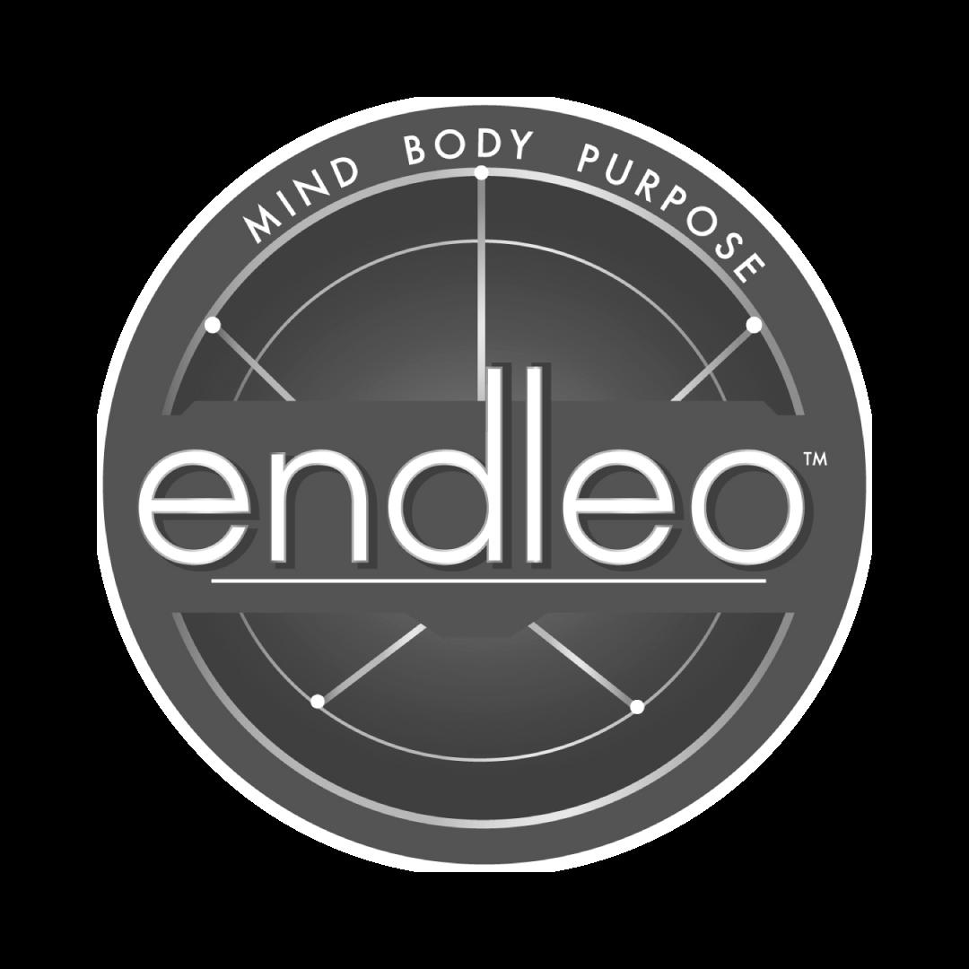 end_logo.png