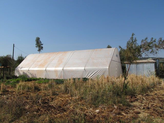 Amiran Greenhouse Sustainable Project already put in place for Mama Tunza Children's Centre. This project was fully funded by the Maples Kenya Conneciton Group. You are all SO amazing!