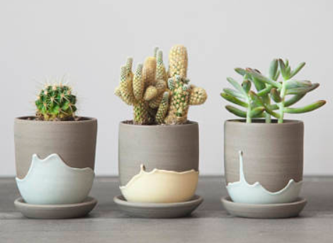 We're seeing so many pastels wander into the commercial products color palette. These stoneware planters would fit right in. With the resurgence of live plants in the workplace, I'm always on the lookout for interesting containers to house them.