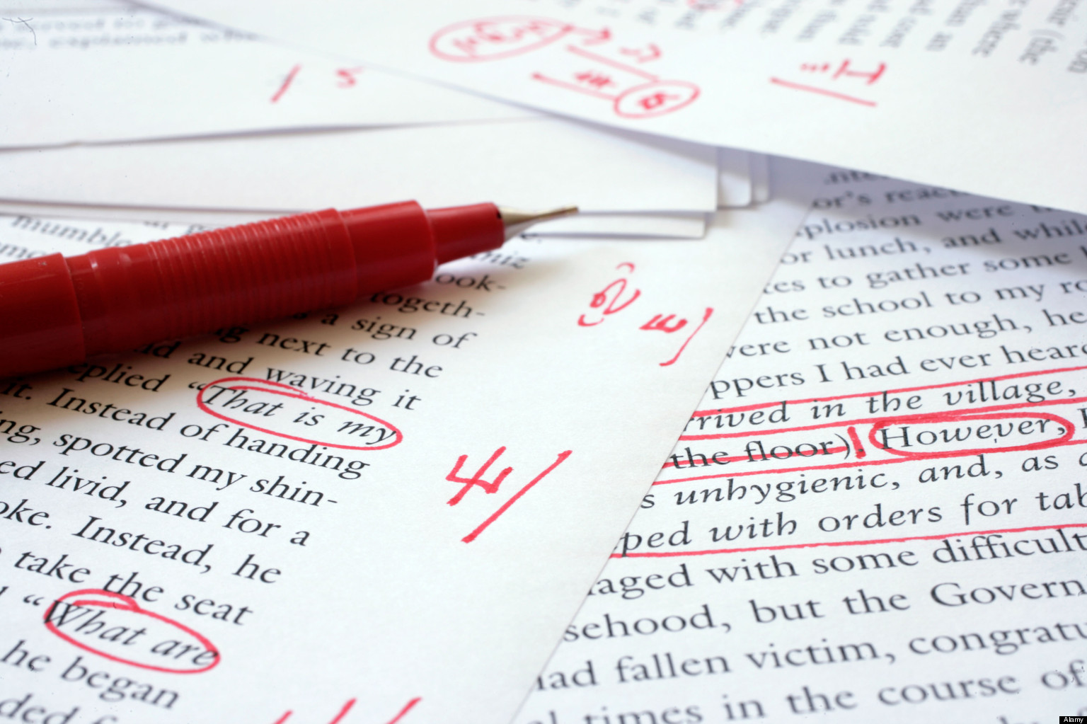 Long Essay Review - $100 per essay <1000 words