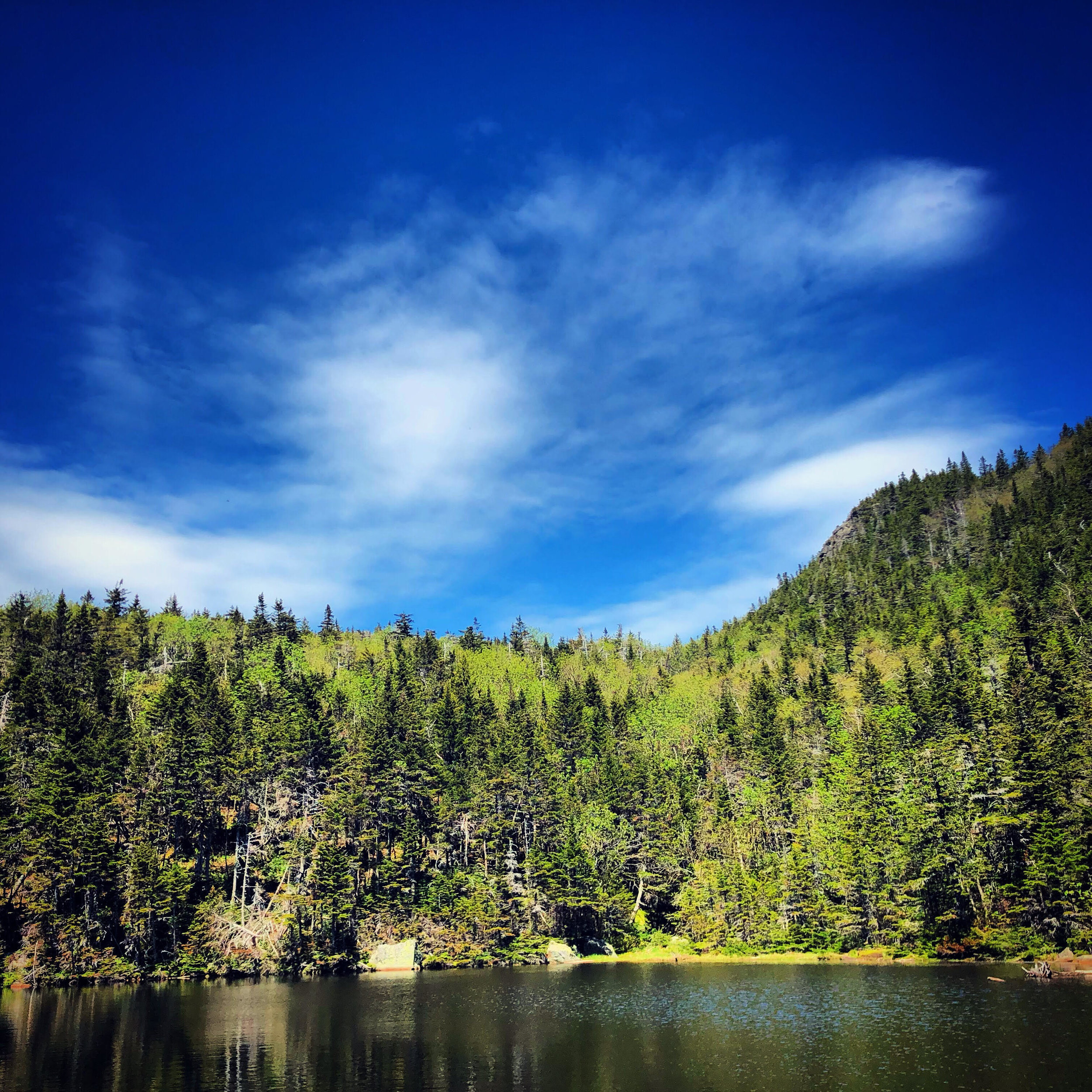 Carter Lakes